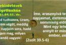 Igehirdetések Szigetlankán – Zsolt 39,5-6
